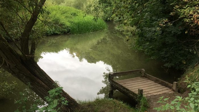 The river Cam at Byrons Pool, Trumpington