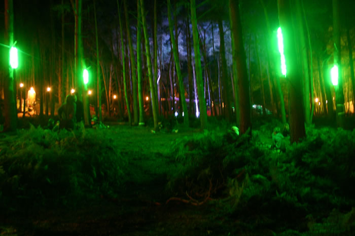 Untitled (believe), neon, 2009 (installed at Latitude Festival, 2010 - 2013)