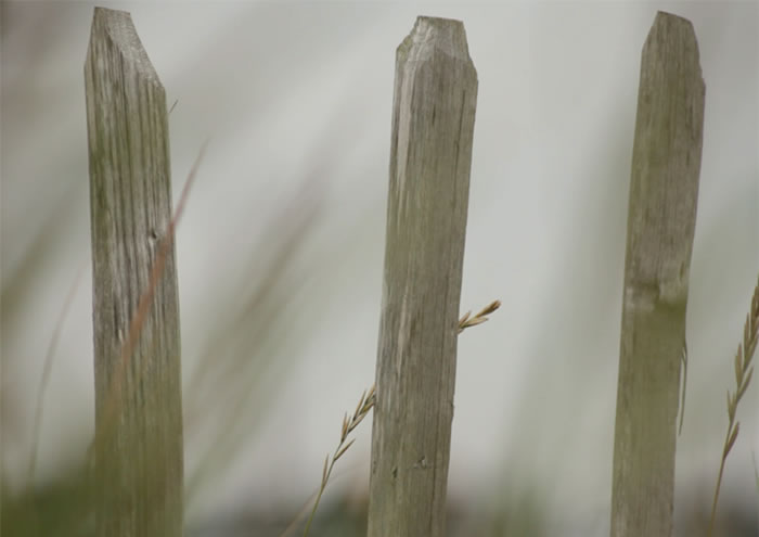 On Tides and Fathoms, film triptych, 2012