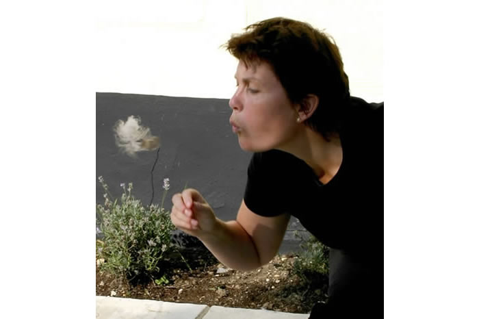 Breath Drawing, action, 2004