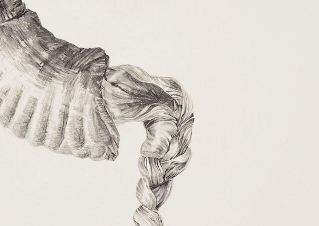Horn   Hair, graphite on paper, 55cm x 39cm, 2015