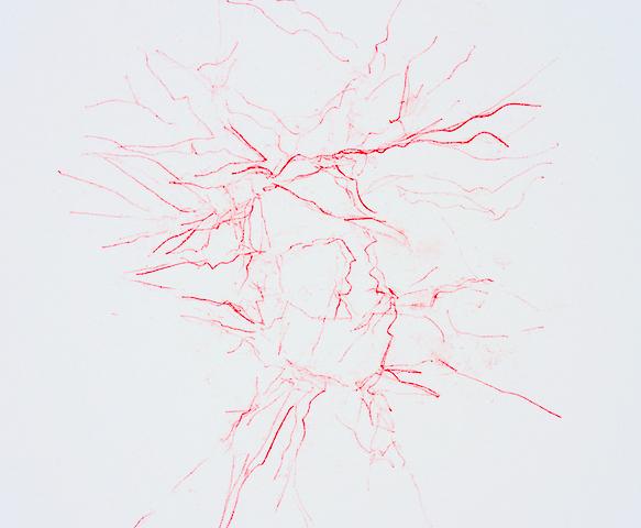 Touch - Wrap (detail), transfer monoprint on paper, 2016