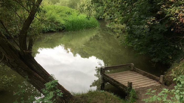 The river Cam at Byrons Pool, Trumpington